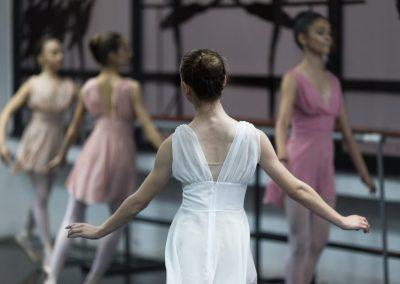profesionalna baletska nastava 2